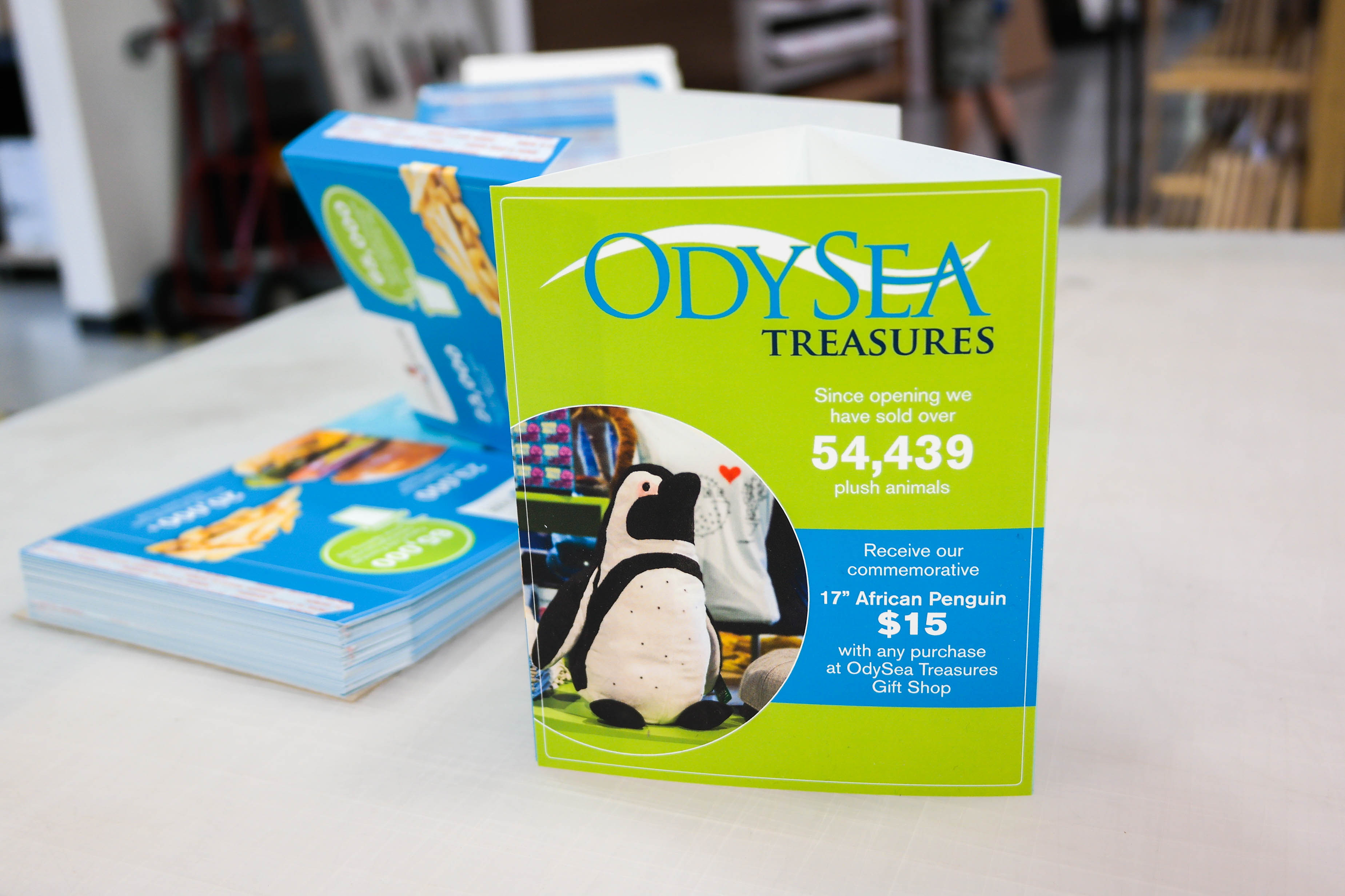 OdySea Aquarium Standing Triangle Table Tents Small Format Marketing Collateral Printing Process